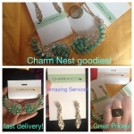 Charm nest accessories, wings necklace, feather earrings